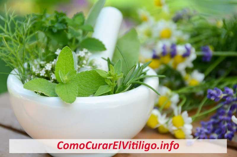 plantas medicinales para vitiligo